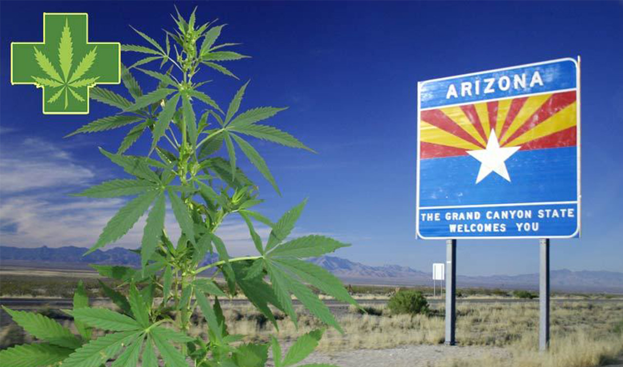 Arizona Cannabis Consulting | Arizona Cannabis Business News