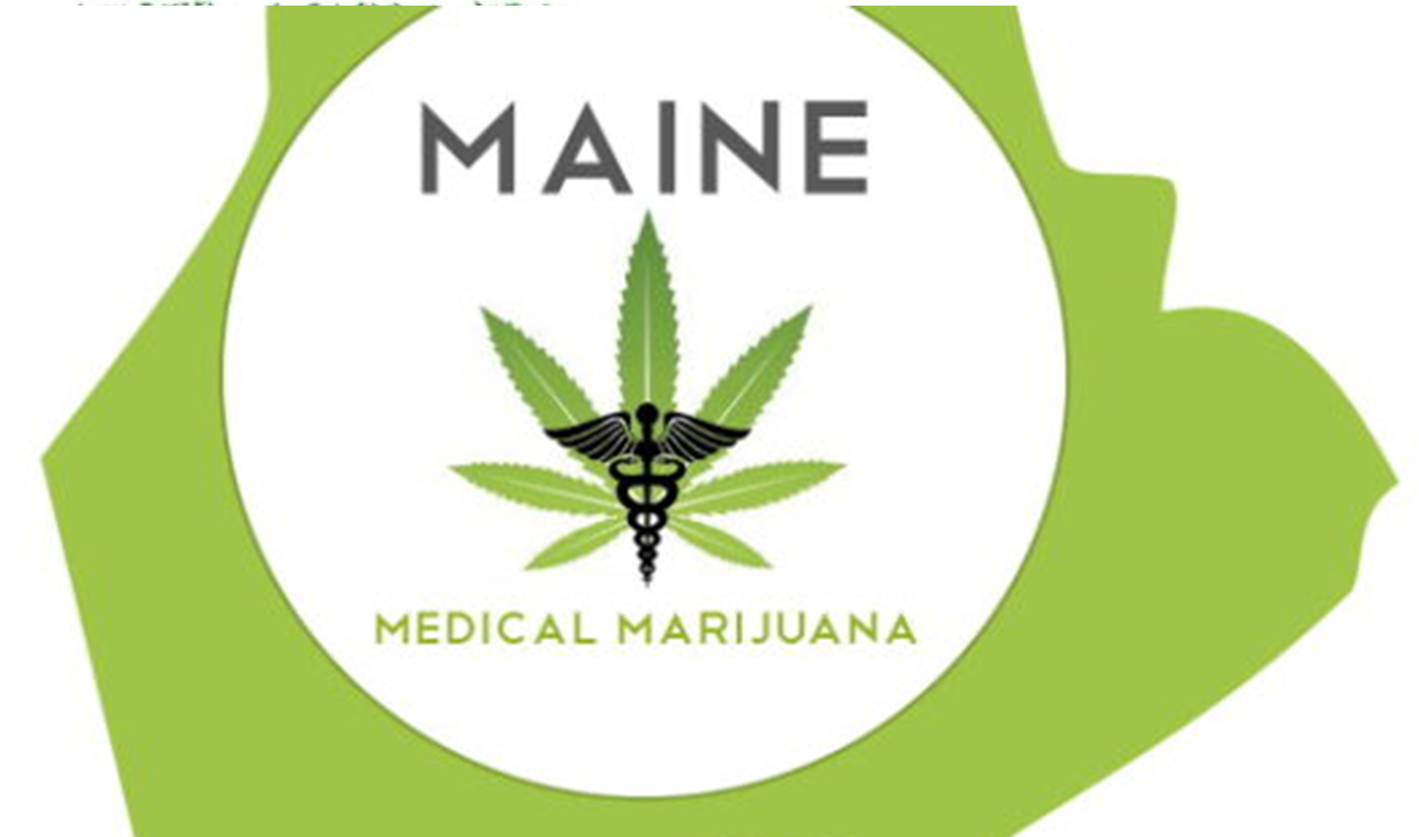 Maine State Cannabis Licensing Requirements