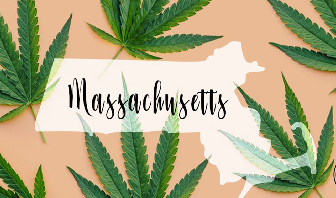 Massachusetts Cannabis Consulting | Massachusetts Cannabis Business News