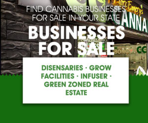 Cannabis Businesses For Sale